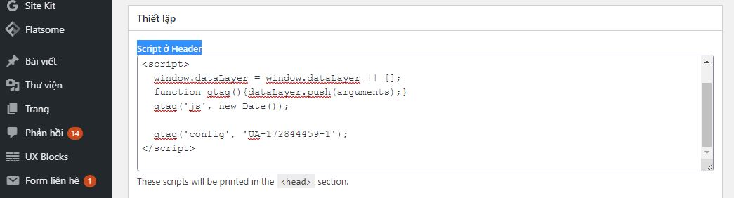 dán code Google Analytics vào
