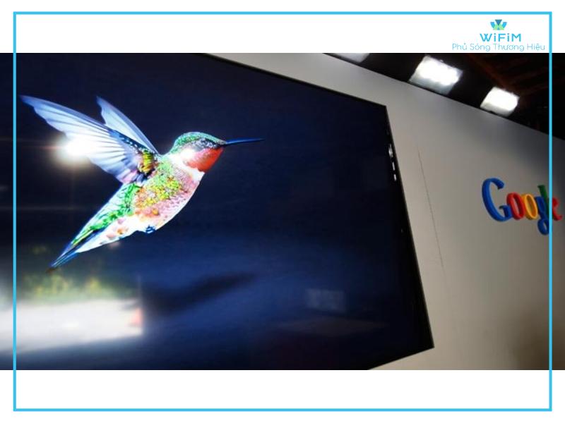Ví dụ thực tế của thuật toán hummingbird