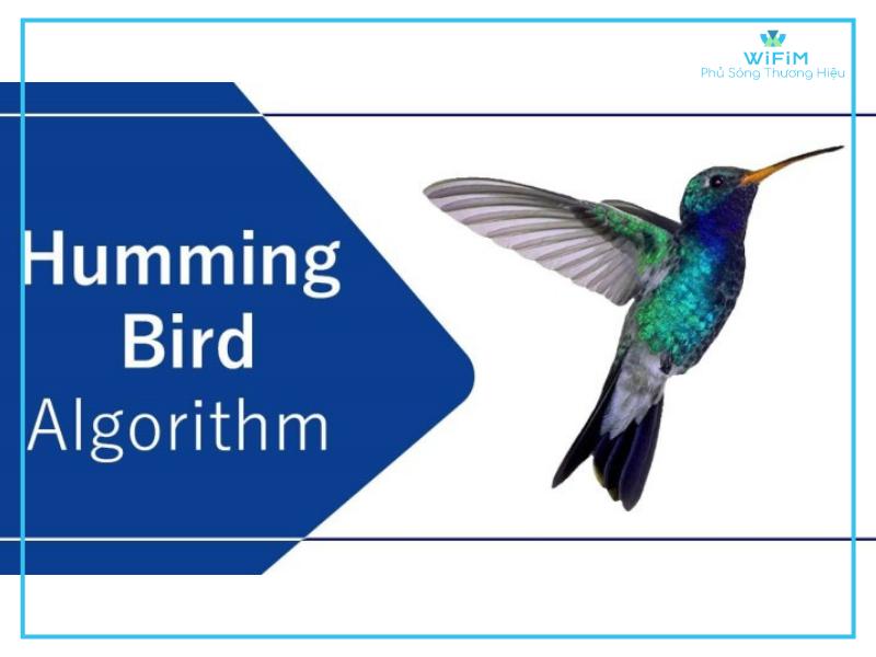 Giới thiệu phương pháp tìm kiếm hummingbird của Google